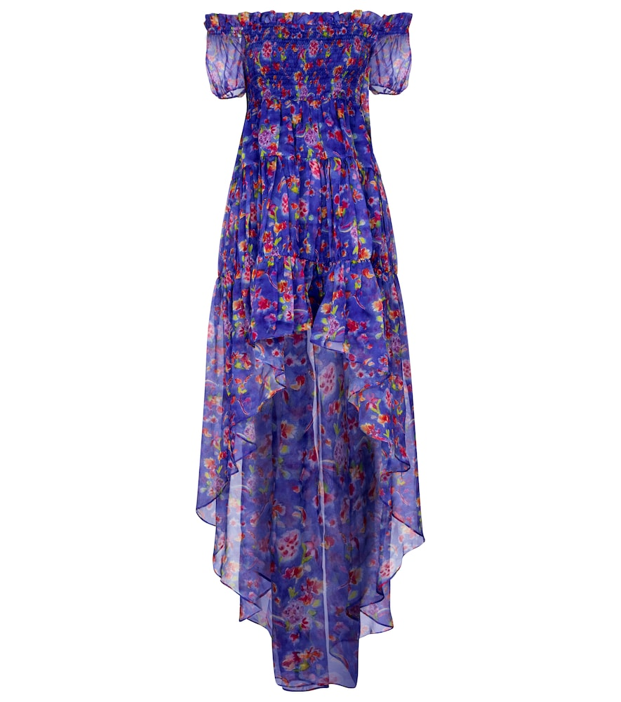 Dora floral silk chiffon dress