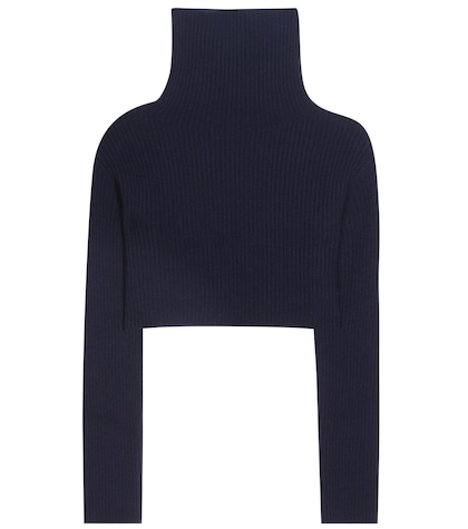 Cropped Virgin Wool And Cashmere Turtleneck Sweater